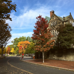 Fall colors outside the Castle, October 2016.  Photo by Kassandra Round.