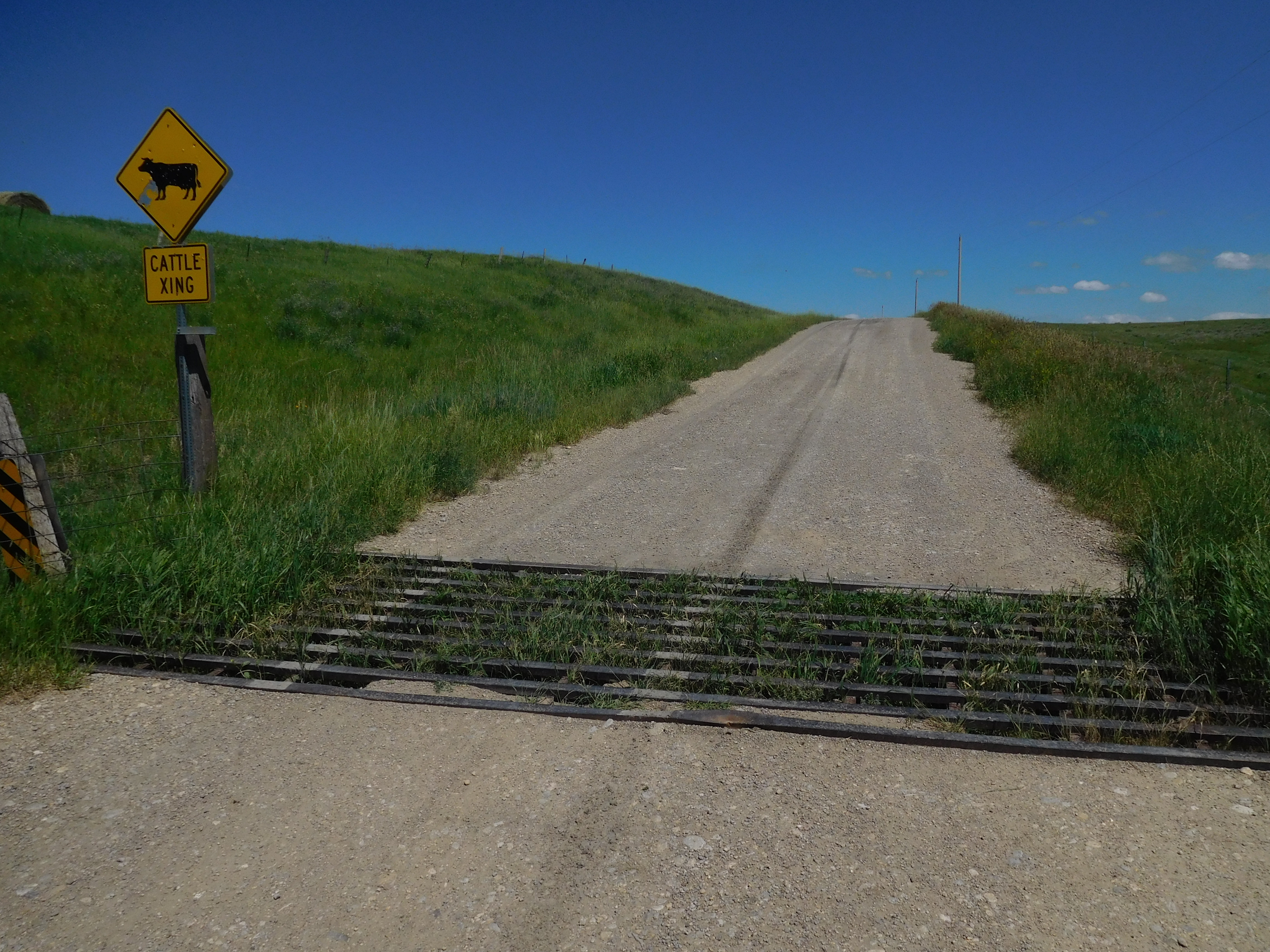 A cattle grid or cattle guard